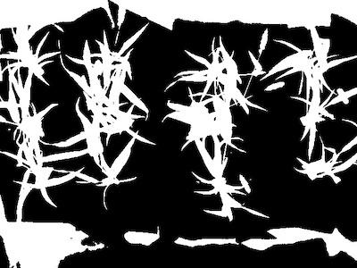 Thermal Workflow - PlantCV